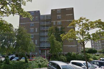 Renovatie individueel rookgaskanaal in Den Haag